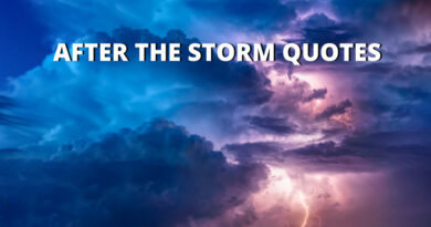 After The Storm Quotes Featured