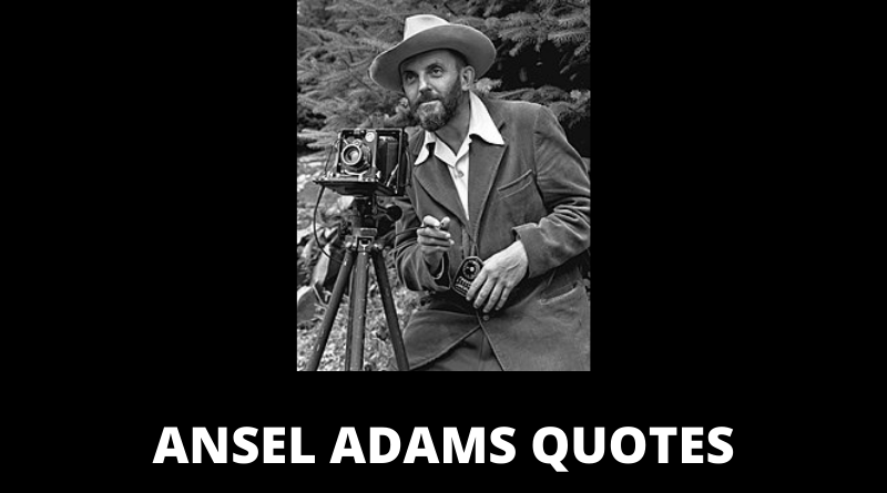 Ansel Adams quotes featured