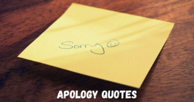 Apology Quotes Featured