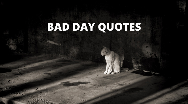 BAD DAY QUOTES FEATURE
