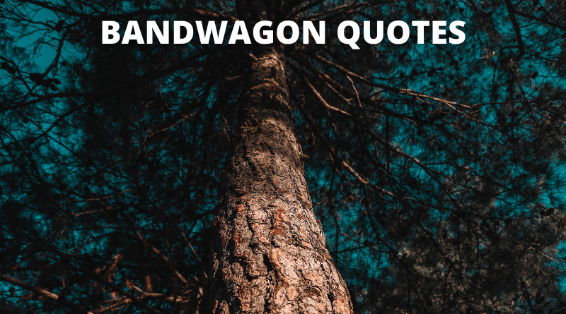Bandwagon Quotes featured