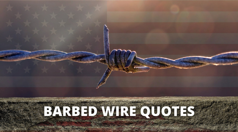 Barbed Wire quotes featured
