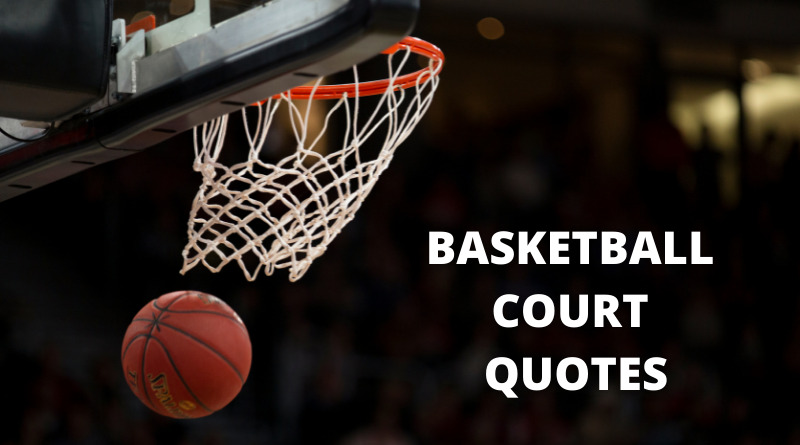 Basketball Court Quotes Featured