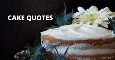 CAKE QUOTES FEATURE