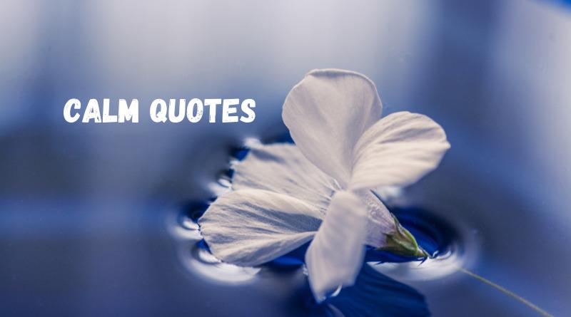 Calm quotes featured