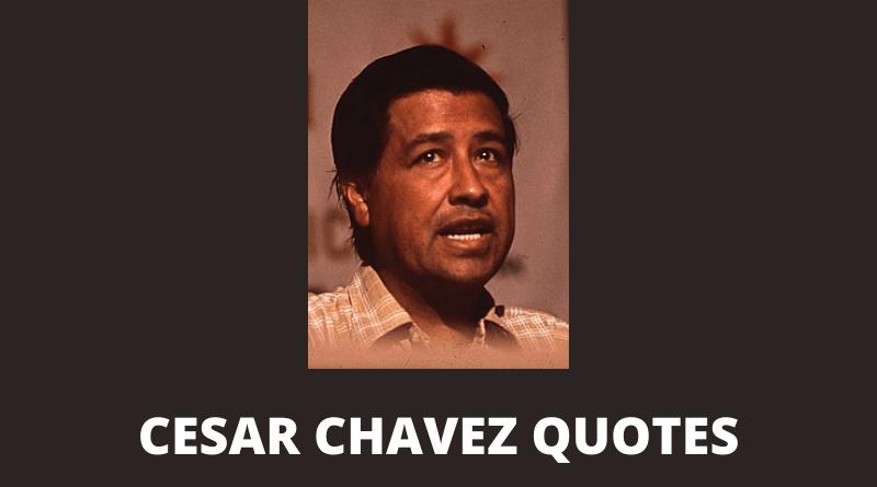 Cesar Chavez quotes featured