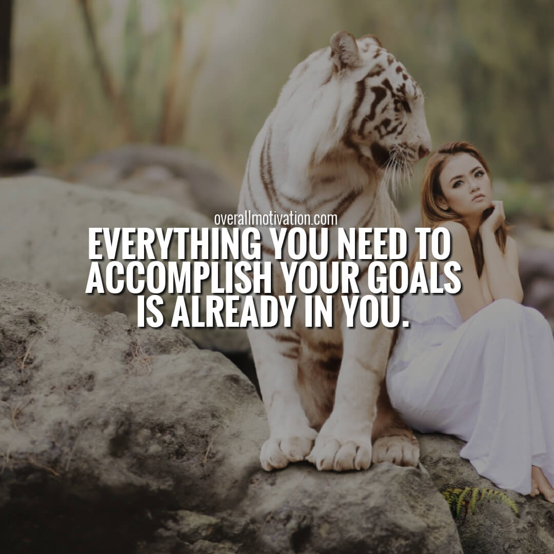 everything you need to accomplish