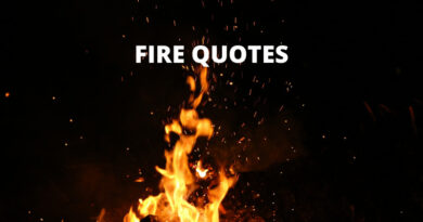 Fire Quotes Featured
