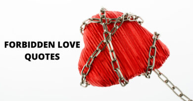 Forbidden Love Quotes featured