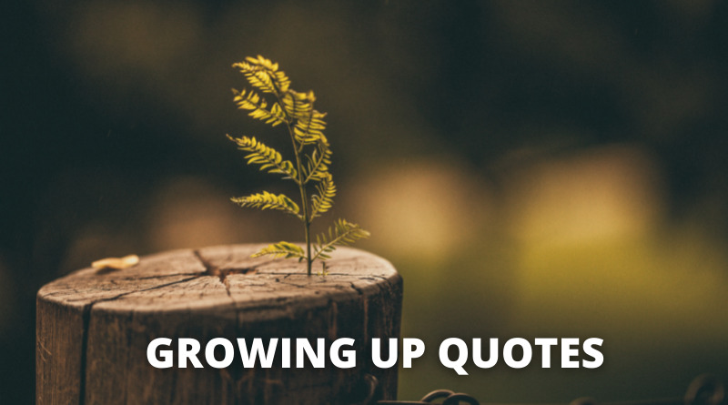 GROWING UP QUOTES FEATURE