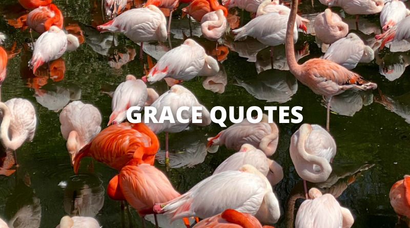 Grace Quotes Featured