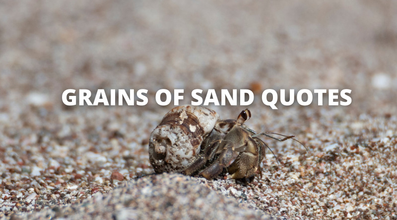 Grains of Sand Quotes Featured