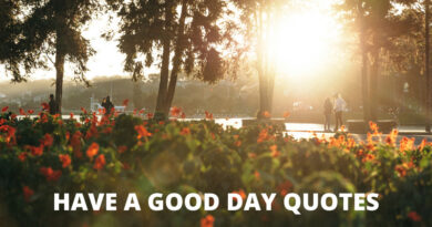 Have A Good Day quotes featured
