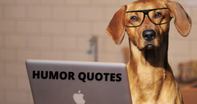 Humor quotes featured