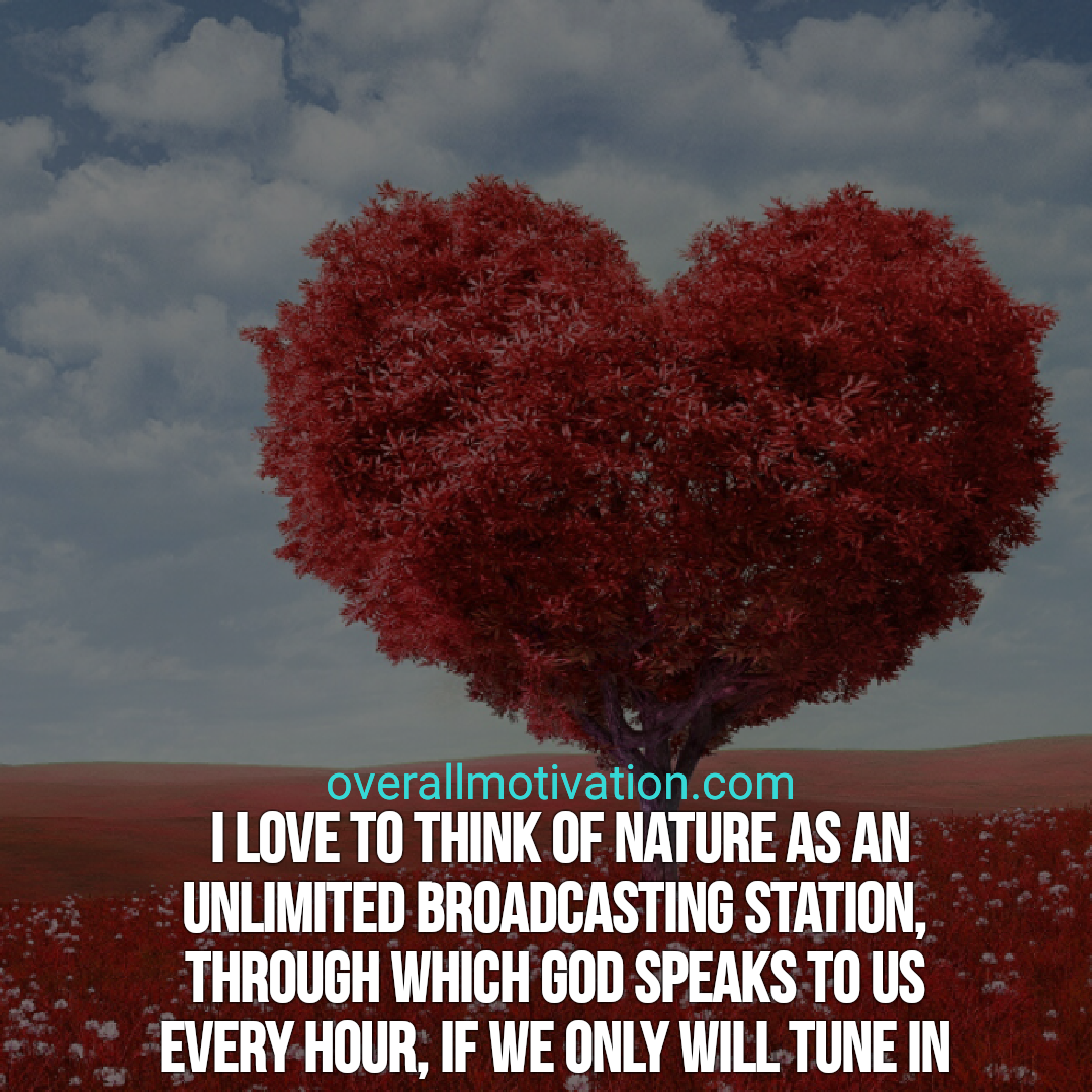 Best Nature Quotes overallmotivation I love to think of nature