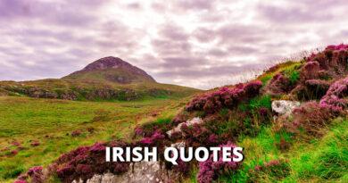 Irish Quotes Featured