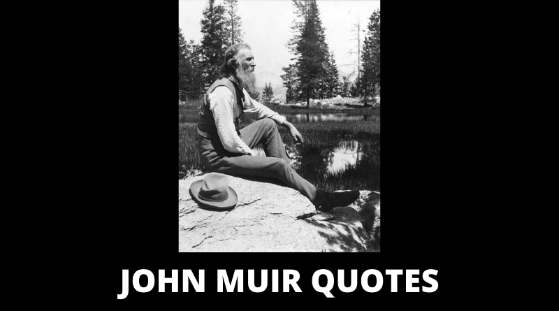 John Muir quotes featured