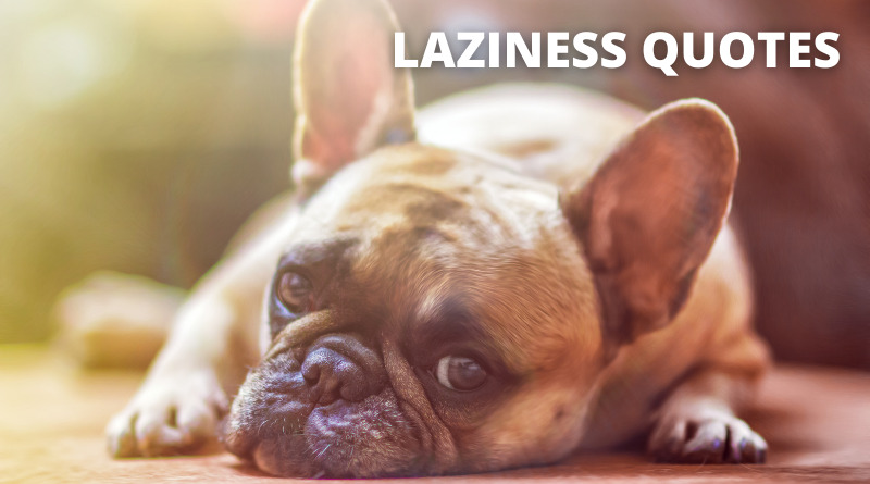 Laziness Quotes Featured