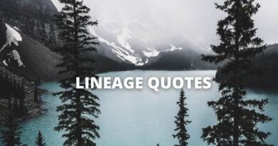 Lineage Quotes Featured