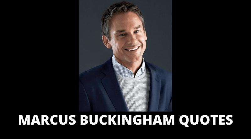 Marcus Buckingham quotes featured