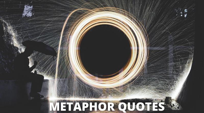 Metaphor Quotes featured