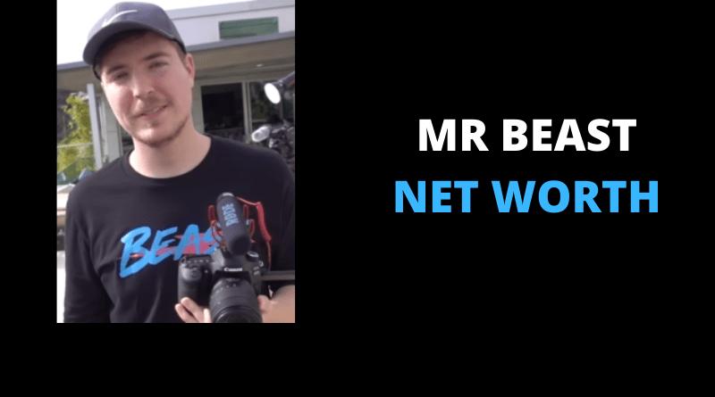 Mr Beast Net Worth featured