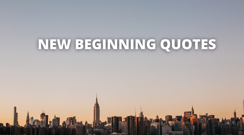 NEW BEGINNING QUOTES FEATURE
