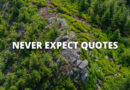Never Expect Quotes Featured
