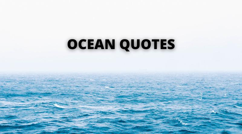 OCEAN QUOTES FEATURE
