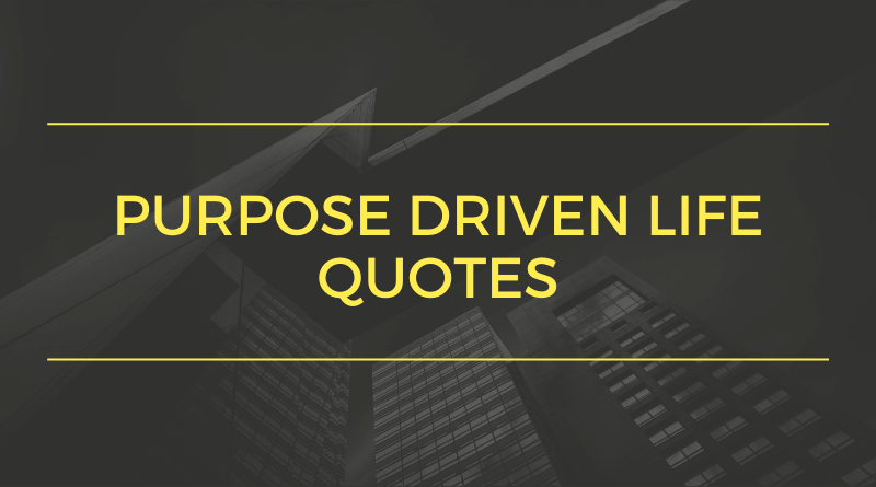 Purpose Driven Life Quotes_Featured