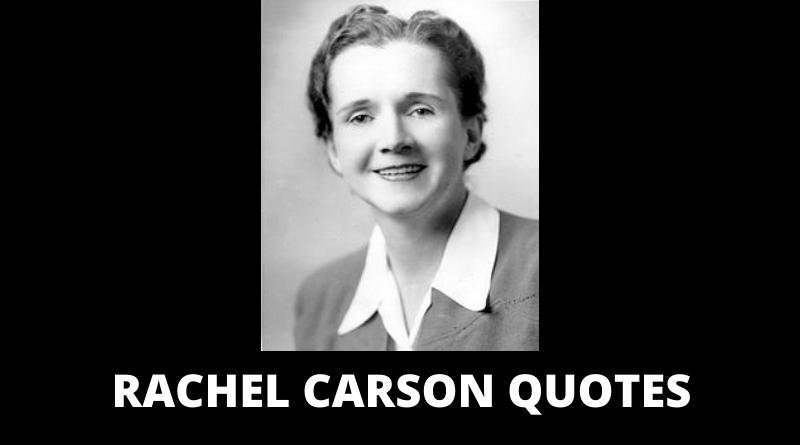 Rachel Carson Quotes Featured