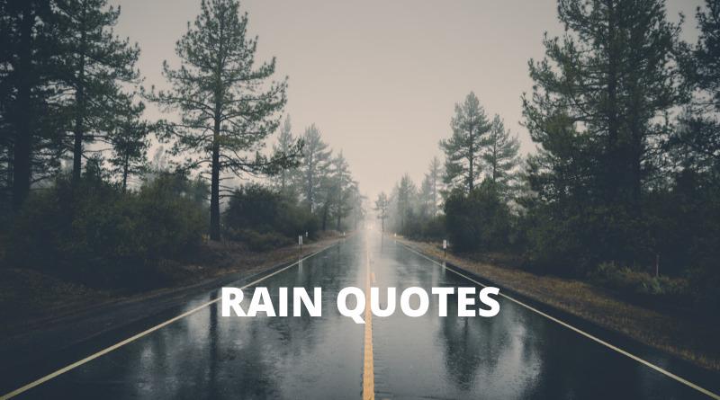 Rain Quotes Features