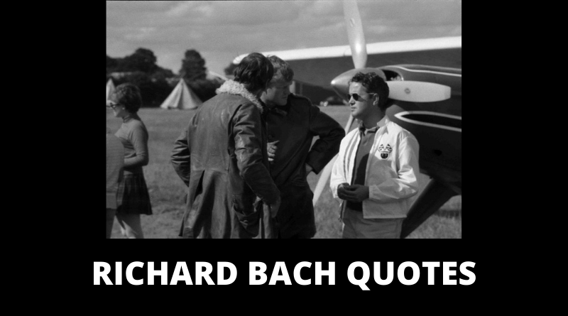 Richard Bach quotes featured