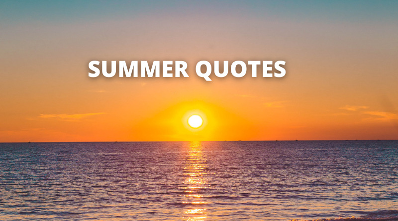 SUMMER QUOTES FEATURE
