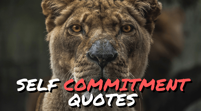 Self commitment quotes featured