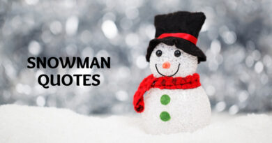 Snowman Quotes Featured