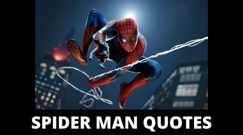 Spider Man Quotes featured