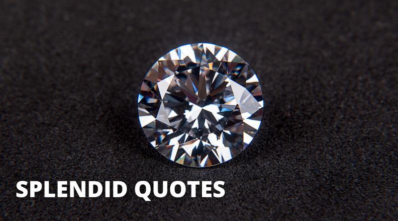 Splendid Quotes Featured