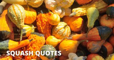 Squash Quotes Featured