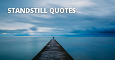 Standstill Quotes Featured