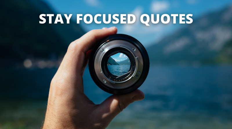 Stay Focused Quotes featured