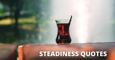 Steadiness Quotes Featured