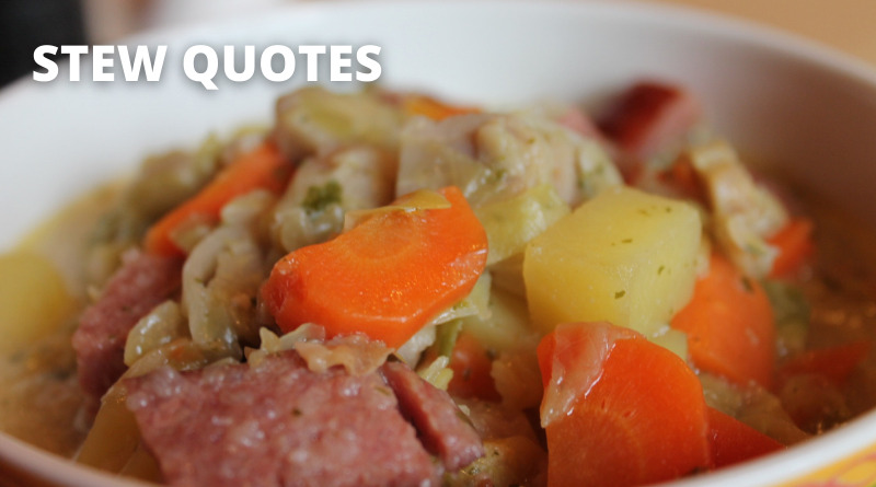 Stew Quotes Featured