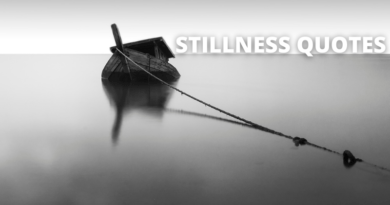 Stillness Quotes Featured