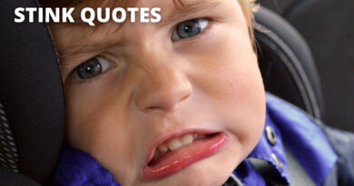 Stink Quotes Featured