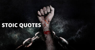 Stoic Quotes Featured