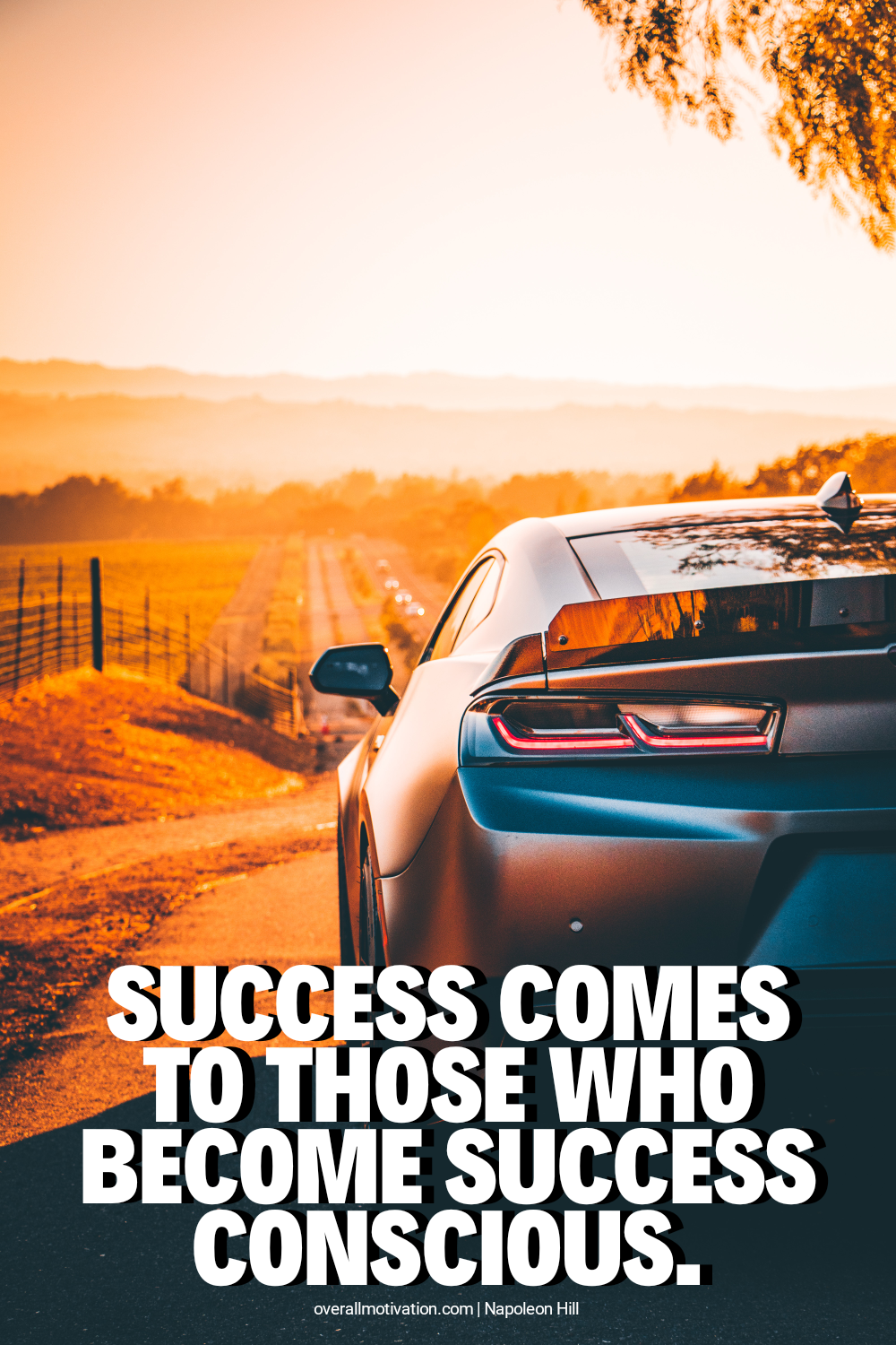 Success comes to those_Napoleon Hill Quotes