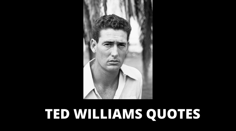Ted Williams Quotes featured