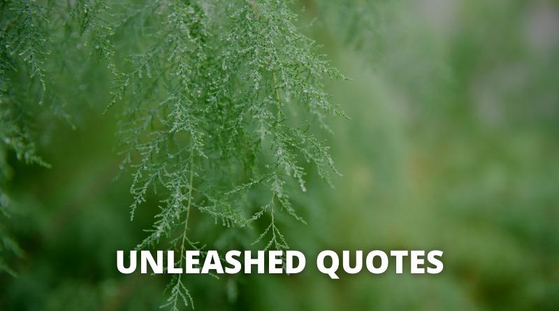 Unleash quotes featured