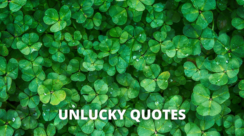 Unlucky Quotes featured